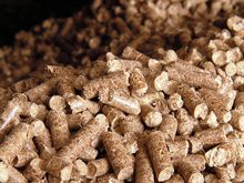 Reed Canary Grass Pellets